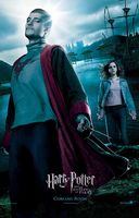 Harry potter-her&ol.jpg