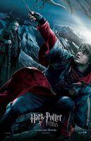 Harry Potter GOF Harry.jpg