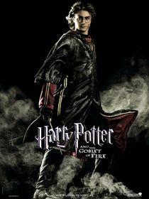 Harry potter GOF Black harry.jpg